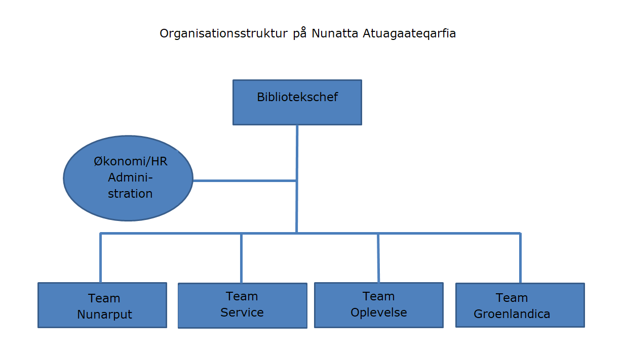 Organisationsdiagram NA